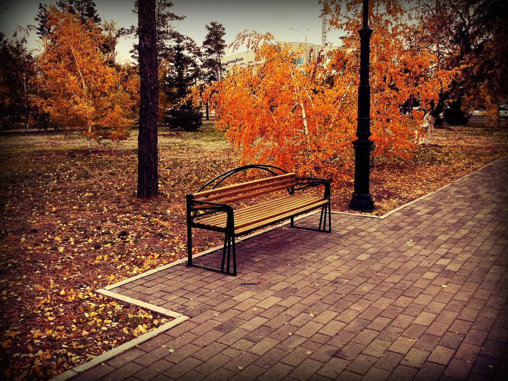 autumn__1